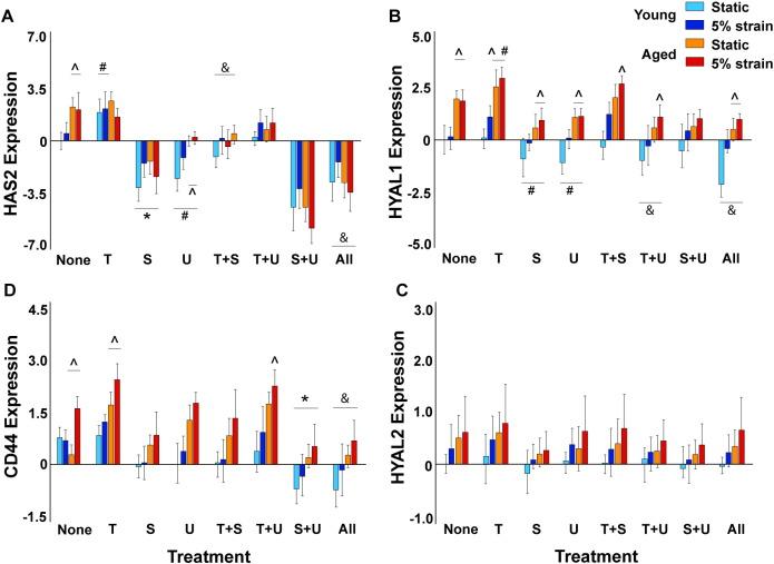 Dysregulation Of Hyaluronan Homeostasis During Aortic Valve Disease