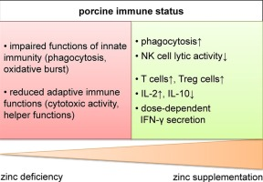 Influence Of Zinc Supplementation On Immune Parameters In Weaned