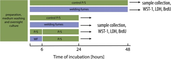 The effects of zinc- and copper-containing welding fumes on murine