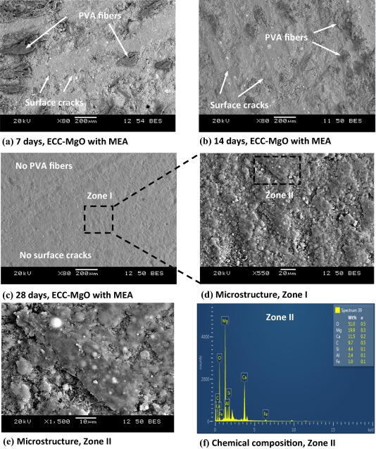 Self-healing and expansion characteristics of cementitious