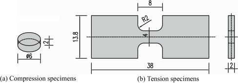 Constitutive modeling of the tensile and compressive deformation