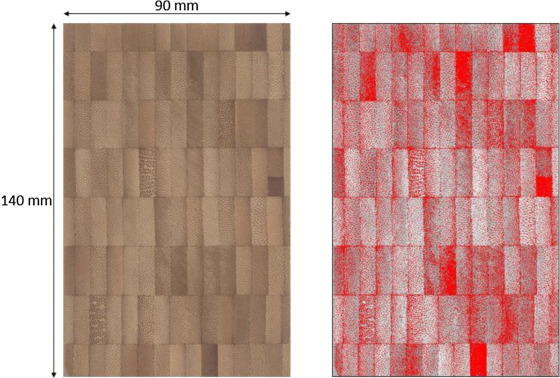 Relationship of structure and stiffness in laminated bamboo