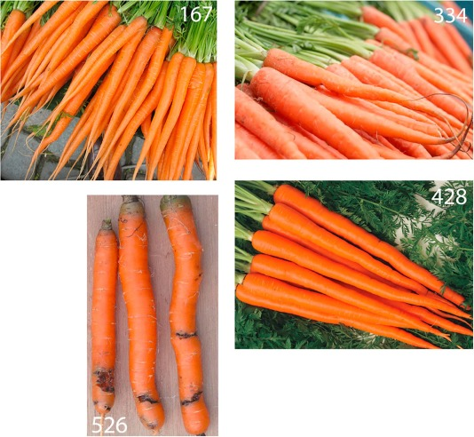 Consumer expectations for vegetables with typical and