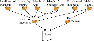 Adaptive concept resolution for document representation and its a fragment of wikipedia structure ccuart Choice Image