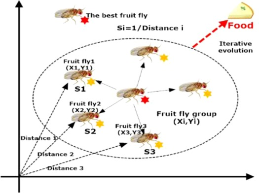 Evolving Support Vector Machines Using Fruit Fly Optimization For