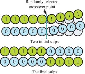 An efficient binary Salp Swarm Algorithm with crossover scheme for