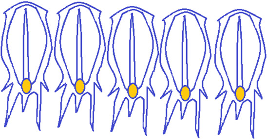 Enhanced salp swarm algorithm: Application to variable speed
