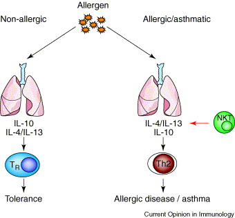 NON ALLERGIC ASTHMA DOWNLOAD