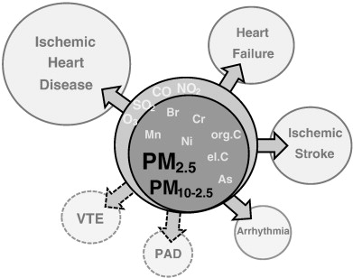 Air Particulate Matter And Cardiovascular Disease A Narrative