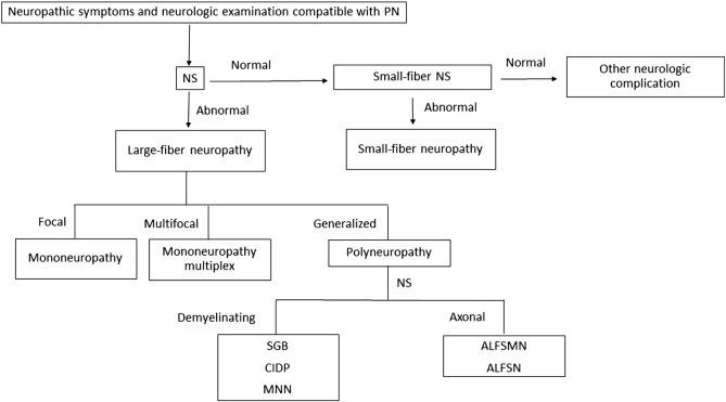 Peripheral neuropathy: An underreported neurologic