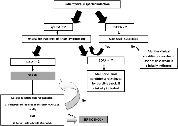 septic shock concept map Rethinking The Concept Of Sepsis And Septic Shock Sciencedirect