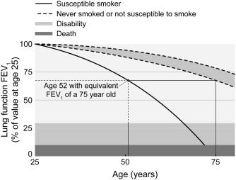 Smoking cessation in chronic obstructive pulmonary disease