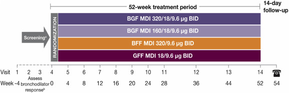 A phase III study of triple therapy with budesonide