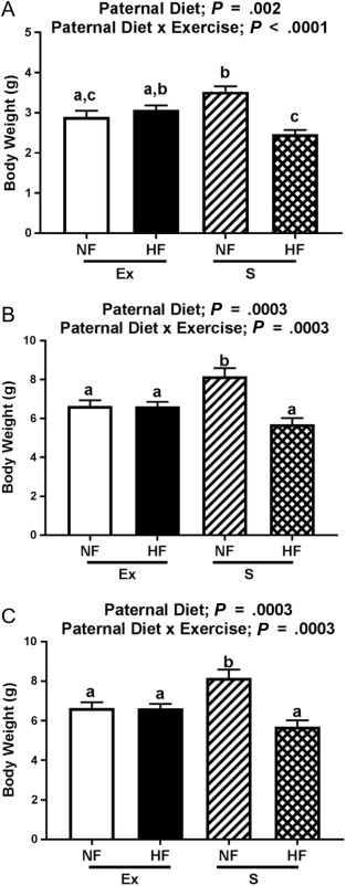 Paternal exercise protects mouse offspring from high-fat-diet