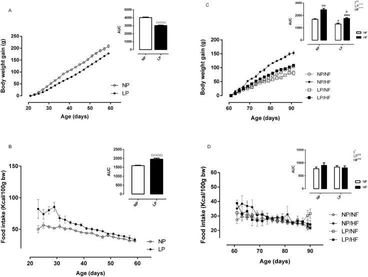 Protein Restriction Diet During The Suckling Phase Programs Rat
