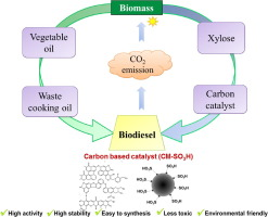 waste cooking oil to biodiesel india