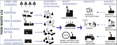 Environmental impacts of food waste: Learnings and