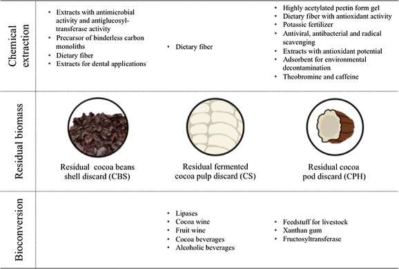 Biotechnological approaches for cocoa waste management: A
