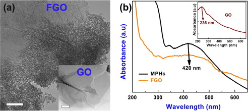 Graphene oxide functionalized with silversilicapolyethylene glycol a hr tem image of fgo scale bar500 nm and go scale bar200 nm nanosheets b uvvis absorption spectrum of mphs and fgo nanosheets inset shows the fandeluxe Choice Image