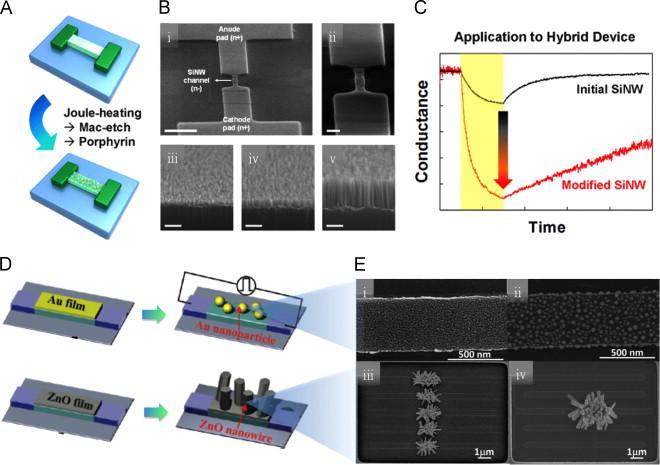 silicon nanowire schematic wiring diagram data silicon nanowire schematic simple wiring diagrams 3d images of nanowire silicon nanowire field effect transistor based