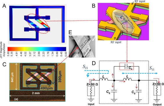 A reusable robust radio frequency biosensor using microwave