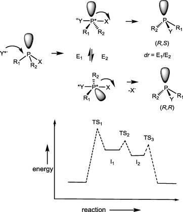Nucleophilic Substitution At Phosphorus Stereochemistry And
