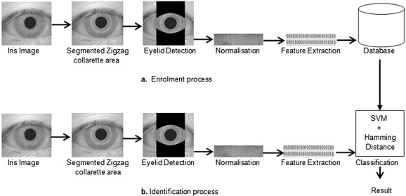 Iris recognition using combined support vector machine and