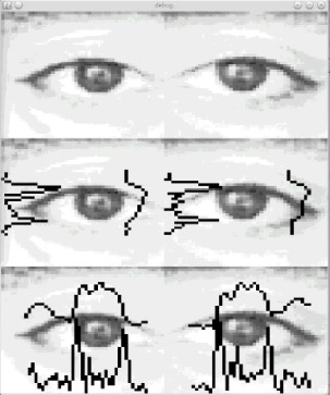 Evaluation of temporal stability of eye tracking algorithms