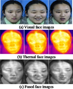 Enhancement of robustness of face recognition system through
