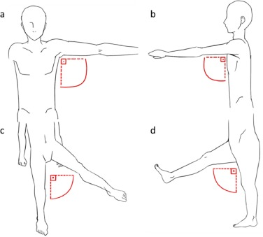 Rehabilitation motion recognition based on the international ...