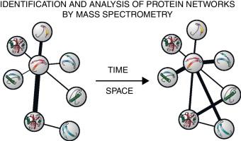 Elucidating human phosphatase-substrate networks tours
