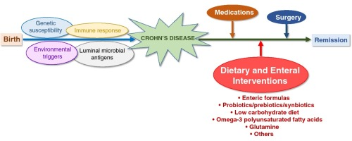 Dietary and enteral interventions for Crohn's disease