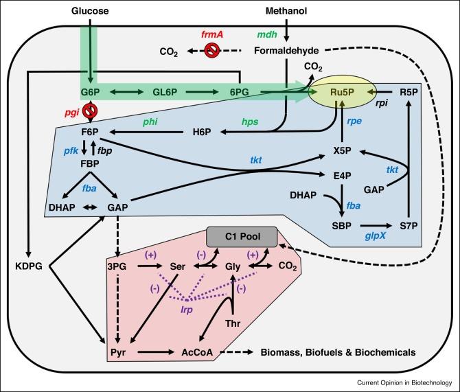principles of bioconversion pdf download