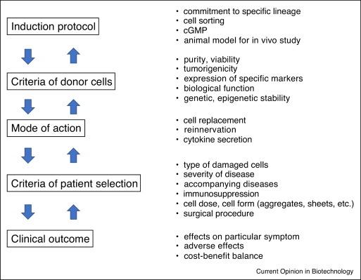 Stem cells and regenerative medicine for neural repair