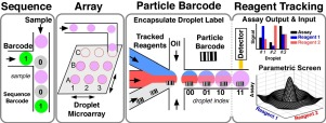 Droplet barcoding: tracking mobile micro-reactors for high