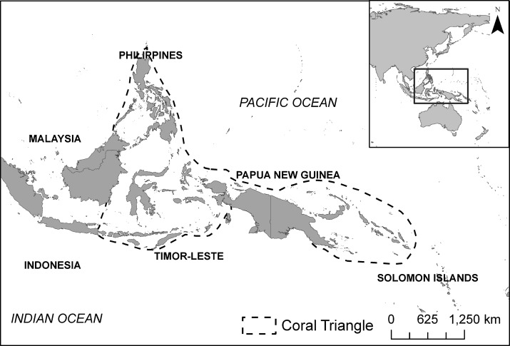 Mediating Science And Action Across Multiple Boundaries In The Coral