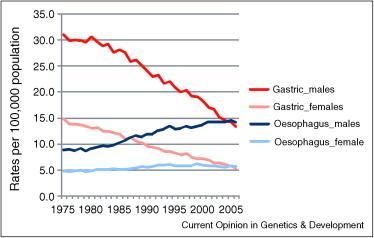 esophageal cancer genetic predisposition
