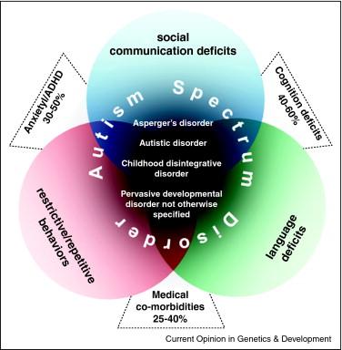 Autism Genetics Explained >> Genetic Architecture In Autism Spectrum Disorder Sciencedirect
