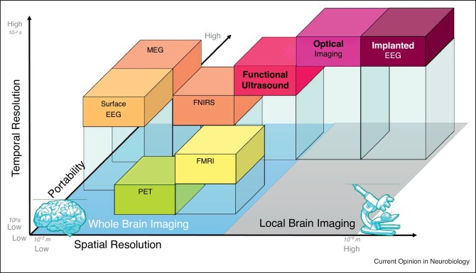 Functional ultrasound neuroimaging: a review of the preclinical and