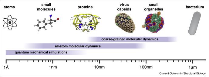 Molecular dynamics simulations of large macromolecular