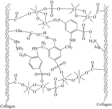 A Salt Free Pickling Chrome Tanning Approach Using A Novel Sulphonic