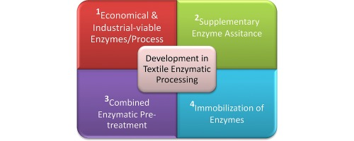 Developments in application of enzymes for textile