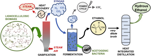 Hydrous bioethanol production from sugarcane bagasse via