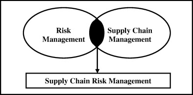 The ISO 31000 standard in supply chain risk management