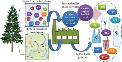 Lignocellulosics as sustainable resources for production of