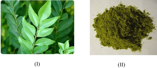 Color And Chemical Constitution Of Natural Dye Henna Lawsonia