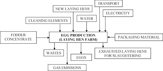 Environmental assesment of intensive egg production: A