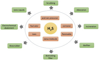 Biofiltration Of Hydrogen Sulfide Trends And Challenges Sciencedirect