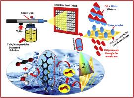 Facile fabrication of superhydrophobic, superoleophilic