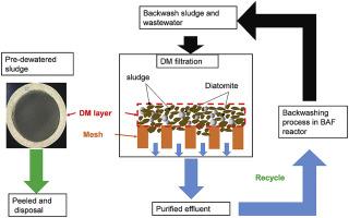 Diatomite enhanced dynamic membrane technology for